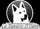 La Tanière d'Odin
